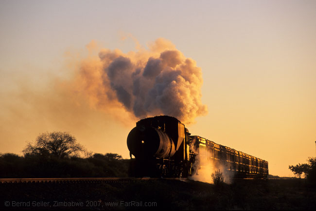 Botswana: class 19D in the early morning light