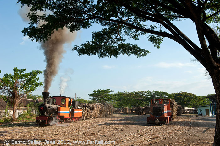 Steam and diesel on the 600 mm gauge railway of Soedhono