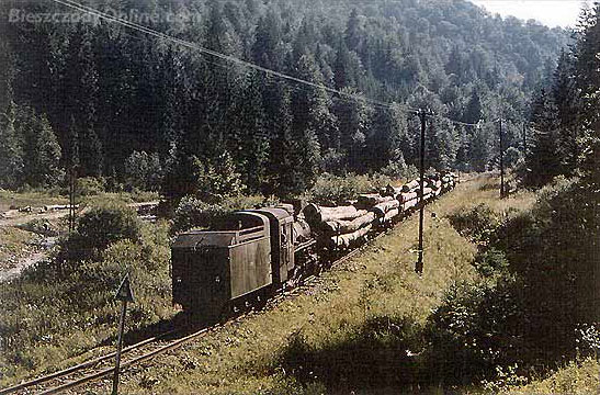 Cisna: historical photo of a logging train, © Bieszczady online