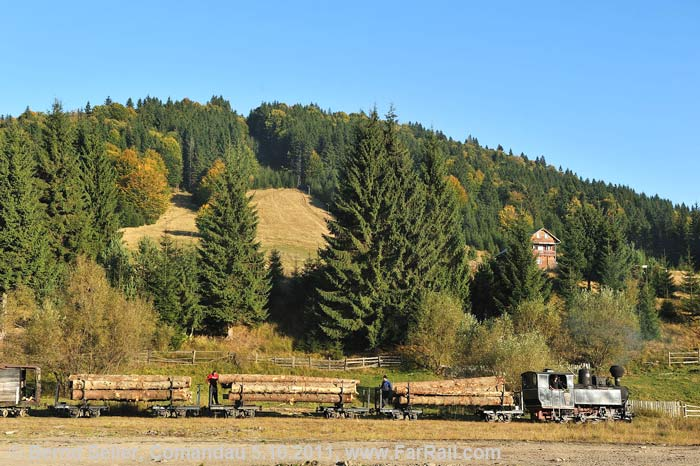 Comandau with a logging train