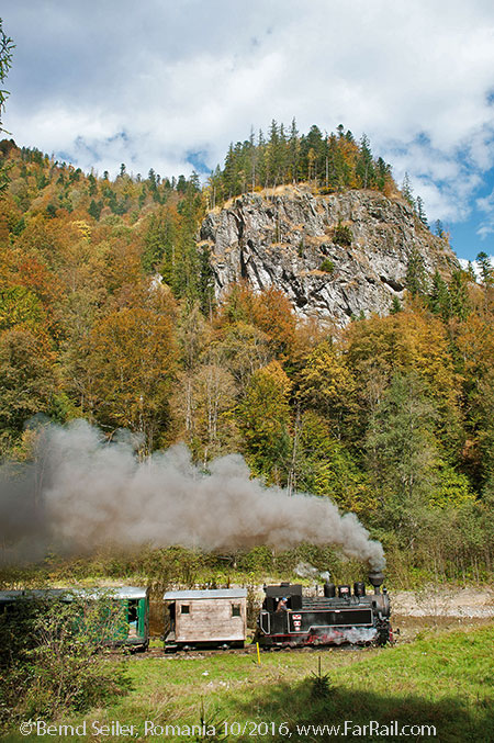 narrow gauge steam in Romania: Viseu de Sus, October 2016